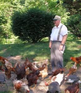 Jack's Chickens