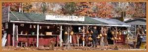 Toxaway Falls Stand
